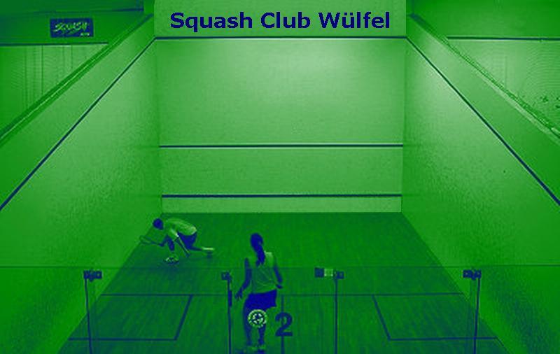 Squash, Hannover, Deutschland, Niedersachsen, Wülfel, Sport, Landesliga, Oberliga, Squashlinks, Squashspielen, Squashschläger, racket, Squashcourt, Vereinssport, Squash Verband Niedersachsen, DRSV